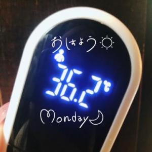 広島県広島市のソープランド Ocean 写メ日記 おはよう!画像