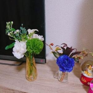 広島県広島市のソープランド Ocean 写メ日記 ハイキュー画像